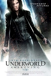Underworld Awakening (2012) - Movie Acoustic Panel