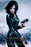 Underworld: Evolution (2006) - Movie Acoustic Panel
